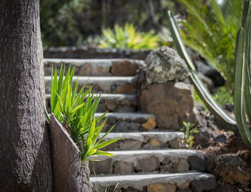 Casa Puma Gartendetail